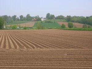 het stemmig landschap van de Vlaamse Ardennen